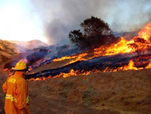 Sancionarán en Campeche al productor que realice quemas agrícolas