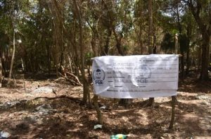 Recupera FGE dos predios invadidos en el poblado de Chemuyil