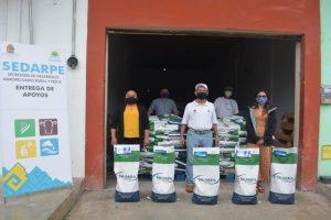 Distrubuirán en Puerto Morelos una tonelada de grano de maíz en beneficio de 100 productores