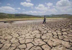 Desertificación y sequía, un panorama muy árido