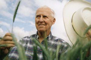 Mejoramiento genético del trigo, de México para el mundo