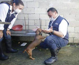 Renán Barrera destaca la importancia de cuidar también la salud de las mascotas