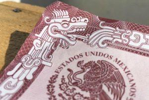 La verdad sobre las serpientes en el acta de nacimiento mexicana