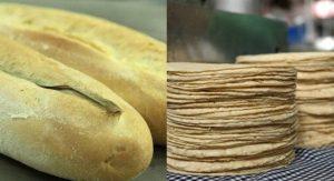 Tortilla o pan, ¿Cuál es mejor para cuidar tu salud?
