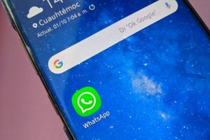 WhatsApp activa función para eliminar mensajes luego de ser vistos