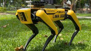Perros robot de policias en Hawái